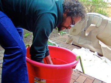 The mud bucket
