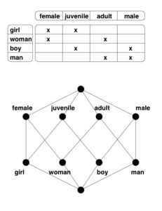 Example of a concept lattice, from fcahome.org.uk