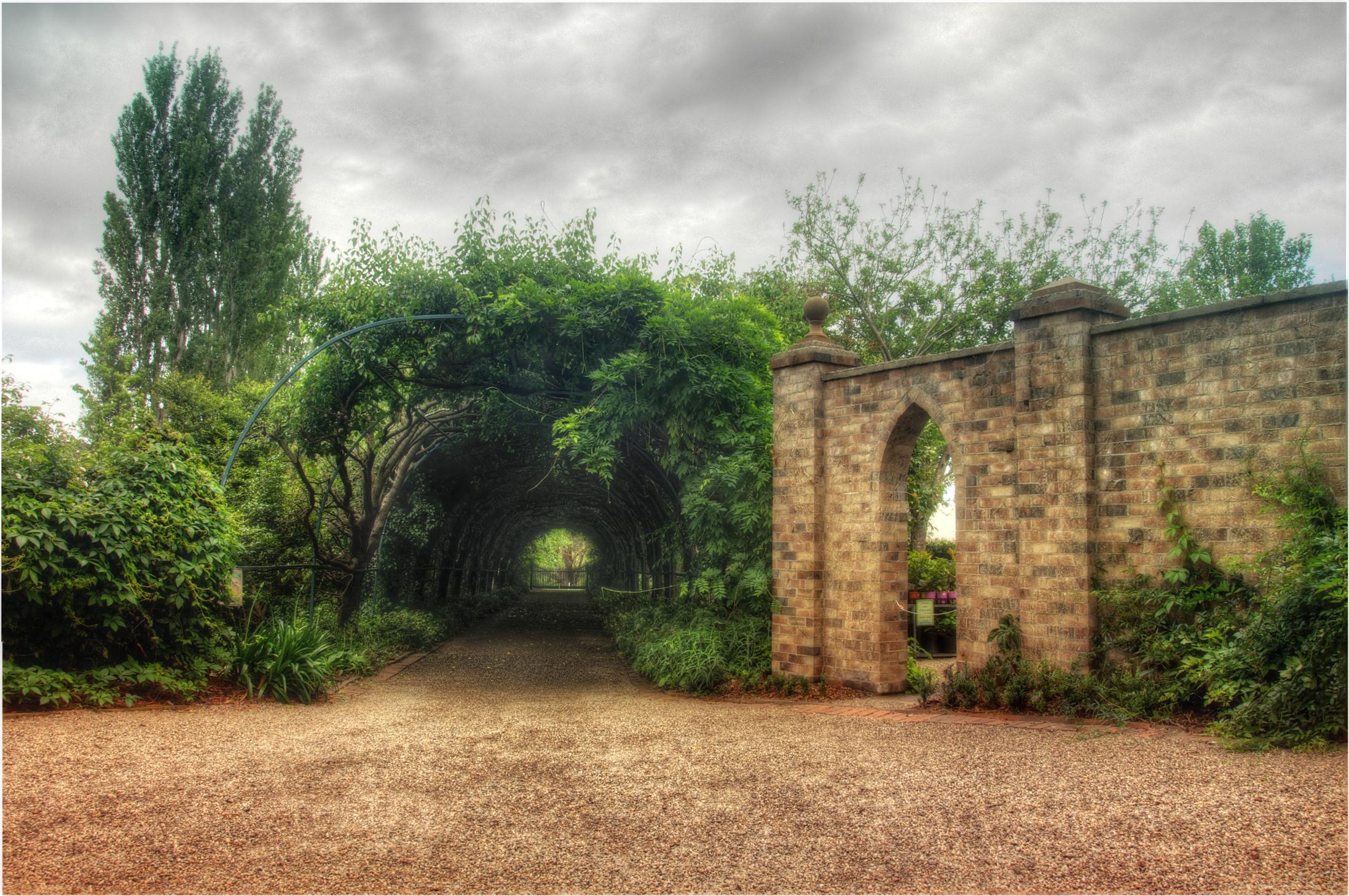 Foxglove Spires Arch
