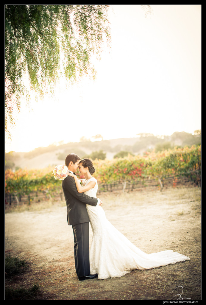 With the beautiful sunset, the rolling Napa Valley hills and the vineyards in the background Grace and Kevin  hard their wedding at The Palm Events Center Wedding in Pleasanton, CA - wedding pictures by Josh Wong Photography