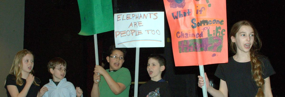 Elephants are People Too