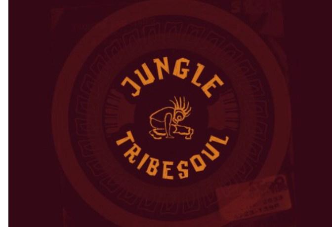 TRIBESOUL – JUNGLE (DUB FEEL), JotNaija