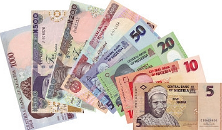 Naira notes: these are bank notes, which are paper types of money used in Nigeria