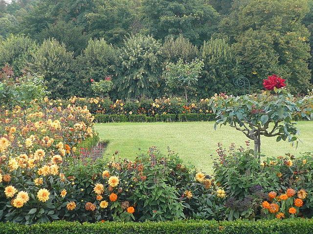 jardin à la française avec fleurs