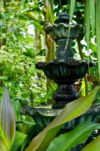jardin avec fontaine