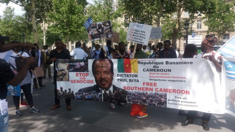 Image result for 2008 cameroon anti-government violence