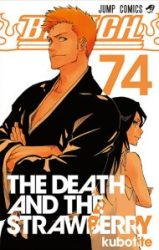 Bleach-Tome-74-The-Death-and-The-Strawberry-JP-Fin