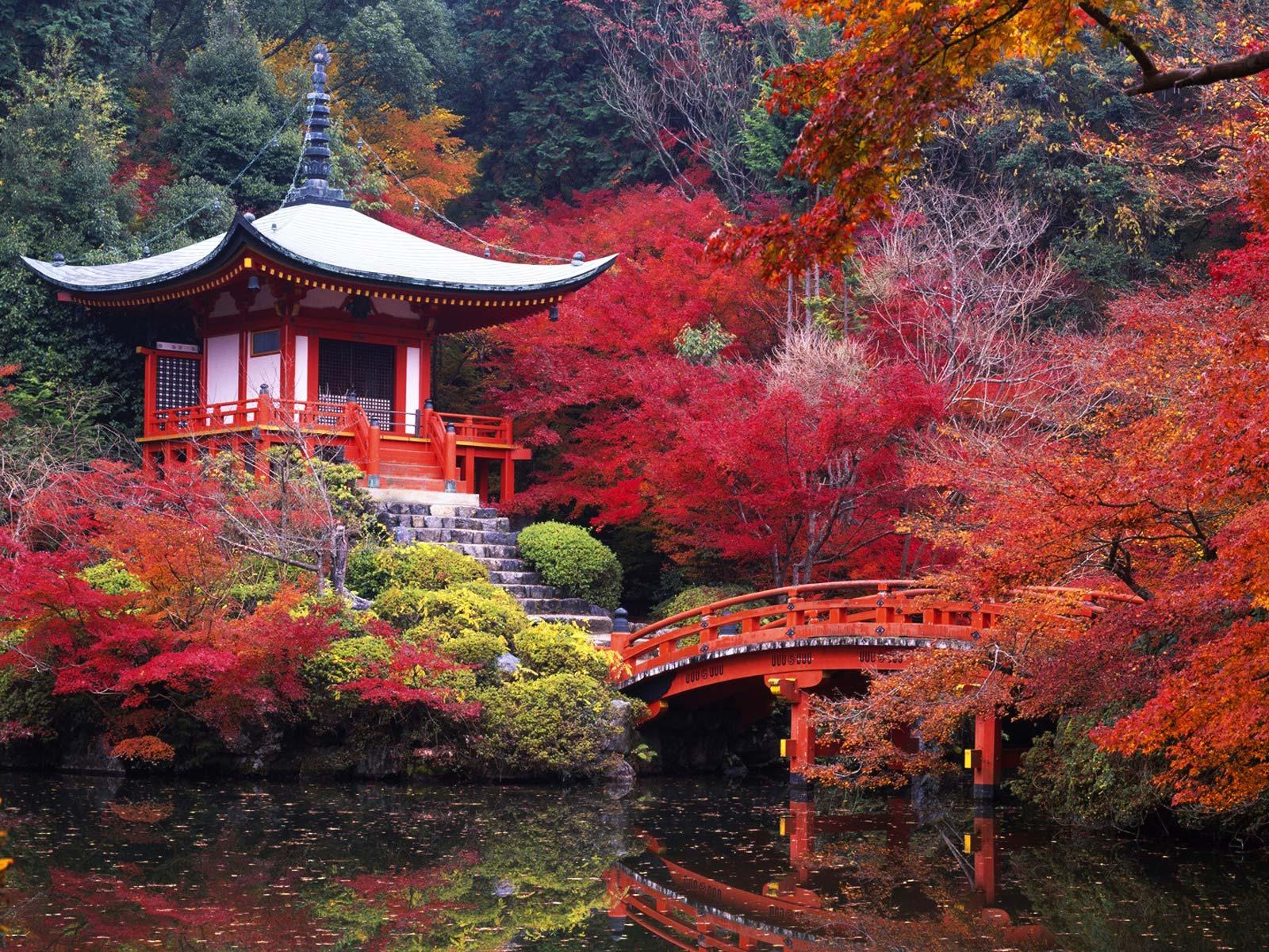 jardin japonais a la maison