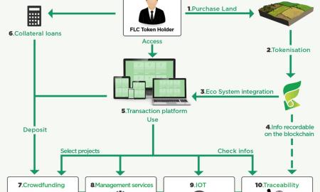 FieldCoin-FLC-Ecosystem