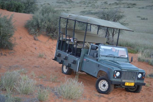 Kalahari Red Dunes Lodge_safari