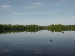 Poplar Lake Fishing Report