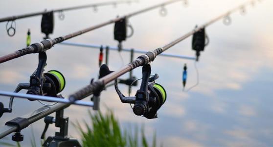 best fishing rod for beginner