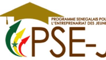 cohorte du PSEJ/Programme Sénégalais pour l'Entrepreneuriat