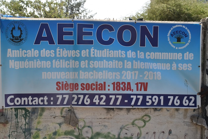 Amicale des Élèves et Étudiants de la Commune de Nguéniéne