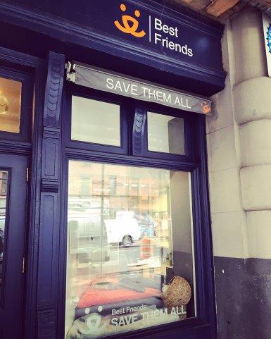 Best Friends Adoption Center on West Broadway