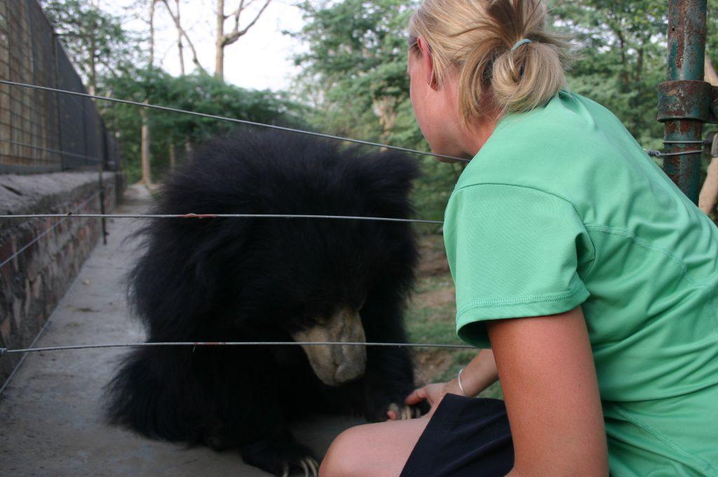 Saying goodbye to Sheti Bear