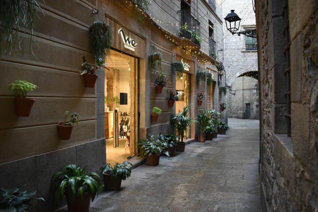 Beautiful alley on way to Plaça de Sant Felip