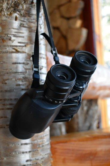 Binoculars for wildlife viewing