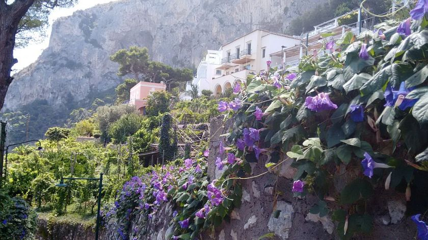 views of capri