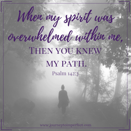 Do you ever feel overwhelmed? Find Bible verses to help you here!
