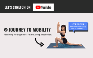 journey to mobility youtube