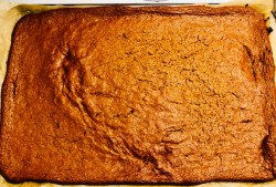 Vegan and Gluten Free Gingerbread Baked