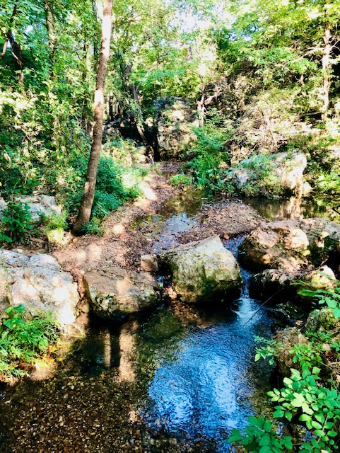 10 Surprising Benefits of Being Outdoors stream