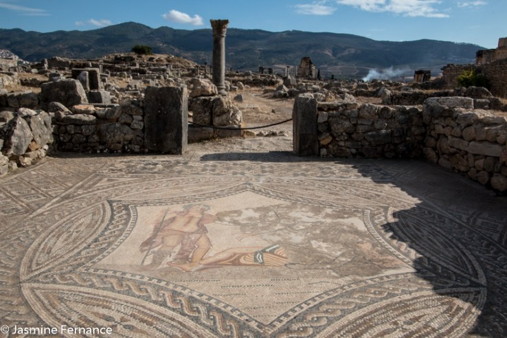 Mosaics dating from Roman times in Volubilis