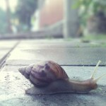 5 Benefits Of Slow Travel