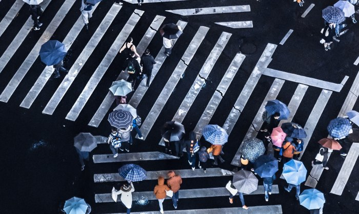 a group of people in umbrellas crossing the road