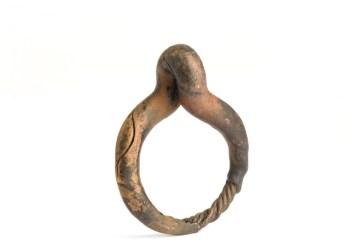 Dana Seachuga - Arm Link