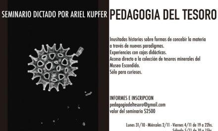 Pedagogía del tesoro, seminario dictado por Ariel Kupfer