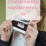 Zwangerschapsupdate week 14