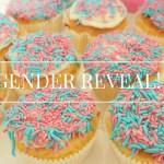 Gender Reveal | Wij krijgen een…..