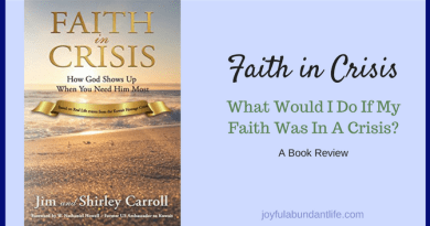 Faith in Crisis Book Review - What would I do if my faith were in a crisis