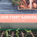Our First Garden – The Plan
