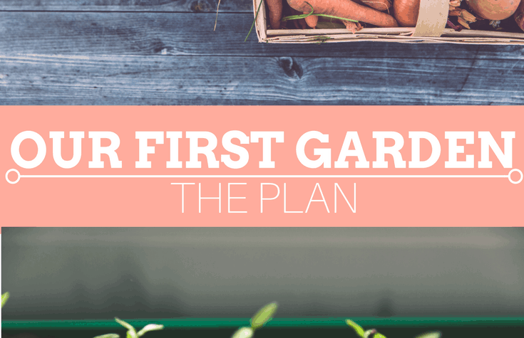 Our First Garden - The Plan