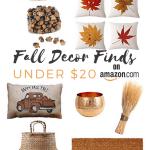 Amazon Favorites: Fall Decor