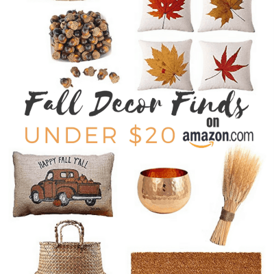 Fall Decor on a Budget! Amazon finds for under $20