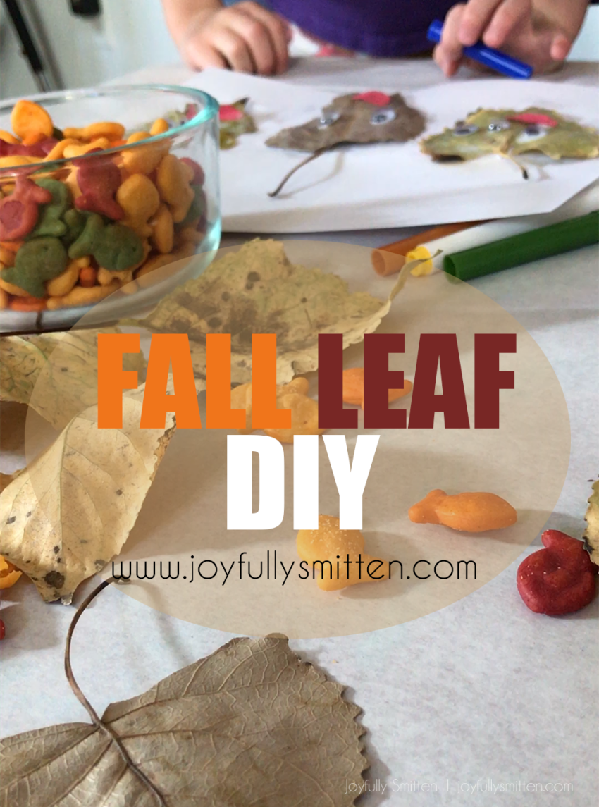 Create a fun fall craft using leaves from outside! Pick a variety of colors and follow our DIY! Don't forget a great craft like Goldfish!