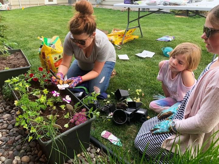 Garden fun with the kiddos!