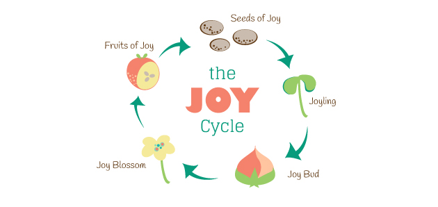 The Joy Cycle: An Analogy