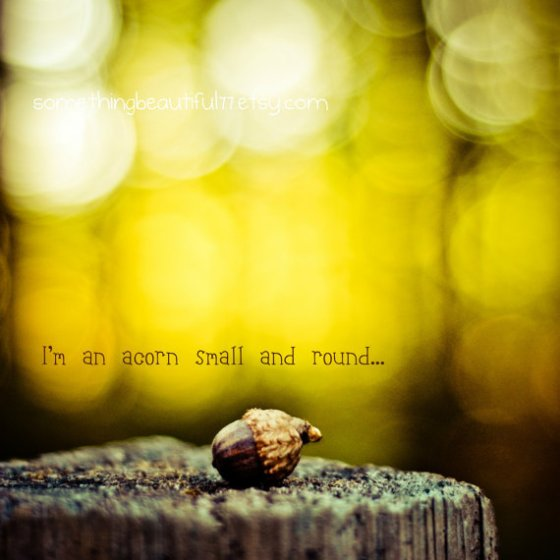I am an acorn small and round by Jordan Eaks