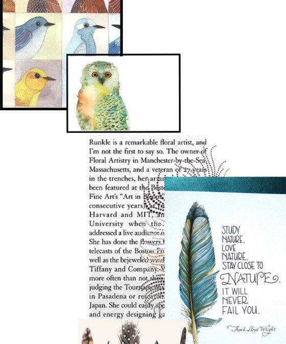 Birds Of A Feather Inspiration Board