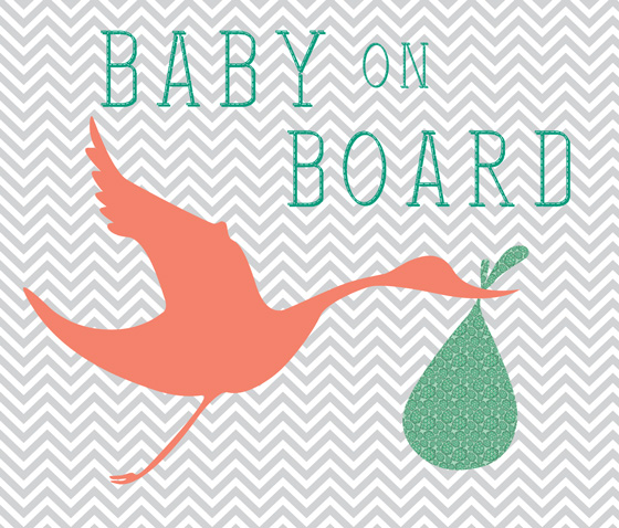Baby On Board! A Big Announcement