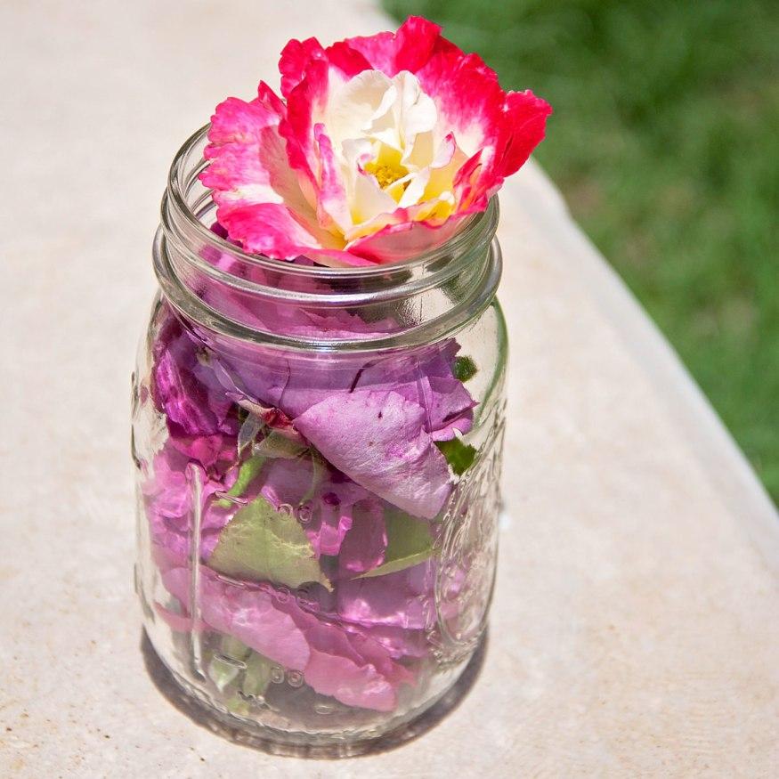 Roses iN A Jar Natural Skincare