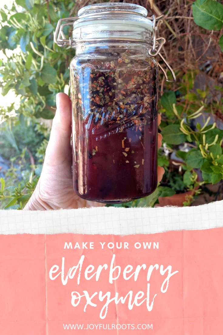 make your own elderberry oxymel, honey and vinegar herb blend, herbalism, medicine, natural living, elderberris