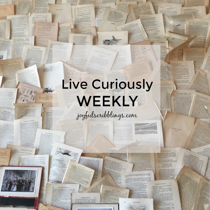 live-curiously-weekly