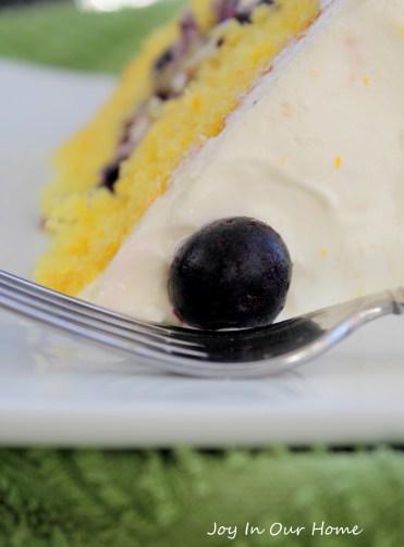 Blueberry Citrus Cake from www.joyinourhome.com