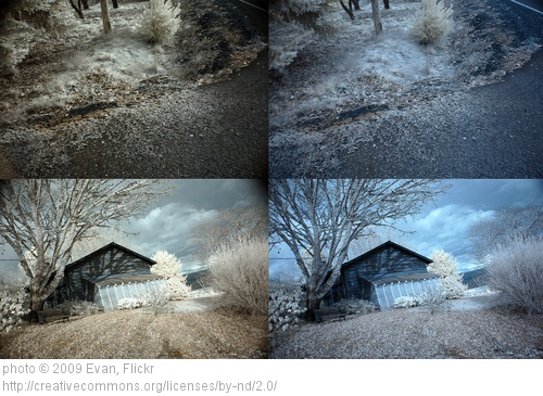 two photos with different filters